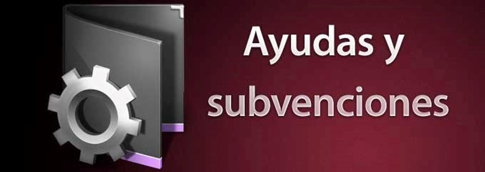 ayudasy subvenciones